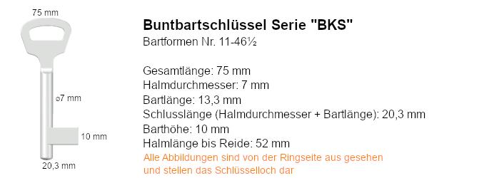 Buntbartschlüssel Serie BKS