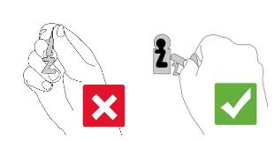 Abbildungen Buntbartschlüssel